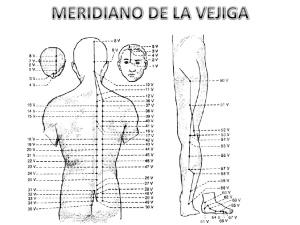 acupuntura-meridiano-vejiga